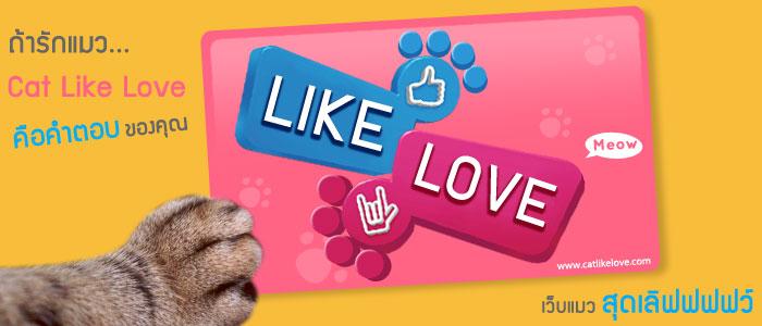 ถ้าชอบกด like ถ้าใช่กด love…เว็บแมวสุดเลิฟฟฟฟว์