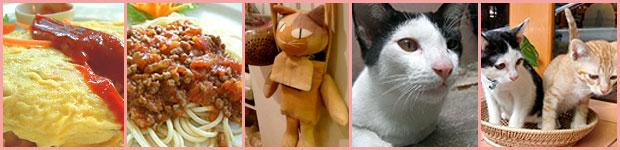 Chico คาเฟ่แมว สวรรค์ของคนรักแมว