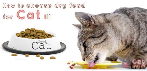 เอ๋??? อาหารแมวแบบไหนถึงจะดีกับน้องแมวน้าาา