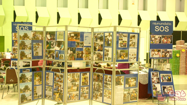 Thailand Cat Show 2012