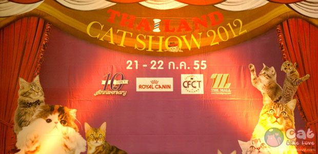 [Event] CatLikeLove Live in Thailand Cat Show 2012