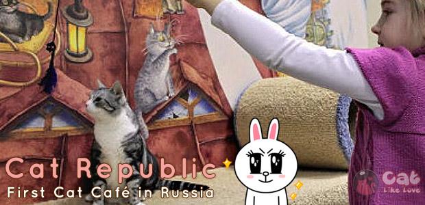 [Shops] เที่ยวคาเฟ่น้องแมวเหมียว ดินแดนหมีขาว โฮกกก!!!