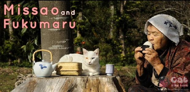[News] ความรักความผูกพันสุดซึ้งของคุณยาย กับเจ้าแมวเหมียว