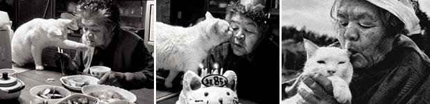 ความรักความผูกพันสุดซึ้งของคุณยาย Missao กับเจ้าแมวเหมียว Fukumaru