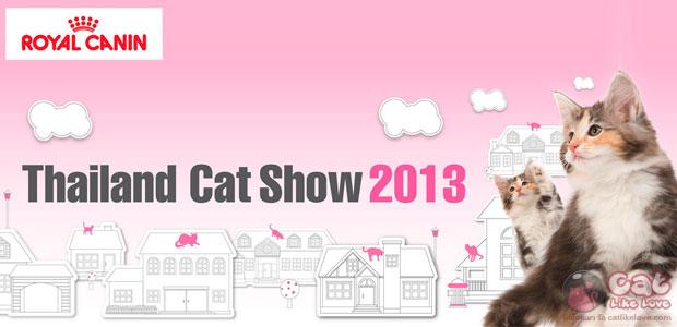 [News] Thailand Cat Show 2013 ครั้งที่ 13 งานเพื่อคนรักแมว