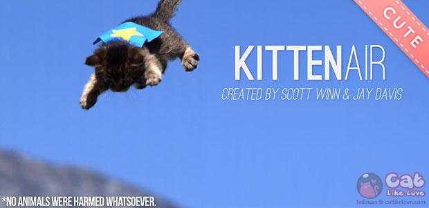 [Clip] Kitten Air...ใครว่าเหมียวบินม๊ายด๊ายยย :3