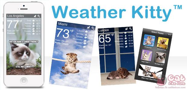 [Free Apps] แมวเหมียวนักพยากรณ์อากาศ