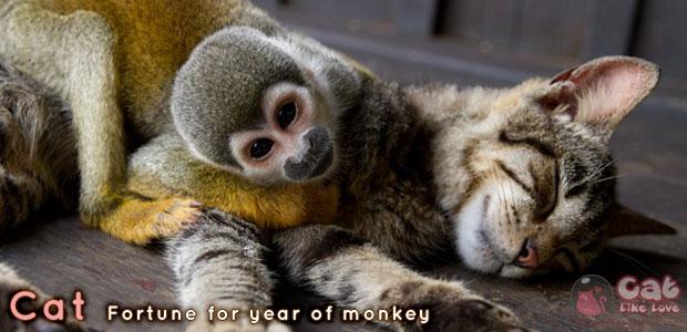 [Horo] ดูดวงแก้ชงปีลิงจั๊กๆ