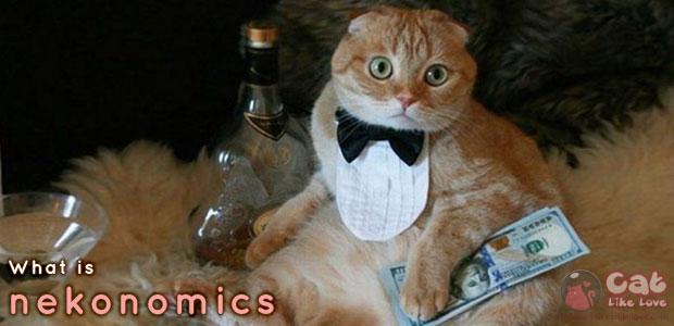 """[Knw] มารู้จัก """"แคตโนมิกส์"""" เศรษฐกิจในอุ้งมือน้องแมว!!"""