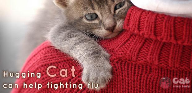 """[Knw] """"กอด"""" น้องหมาน้องแมว เป็นยาช่วยบรรเทาหวัด"""