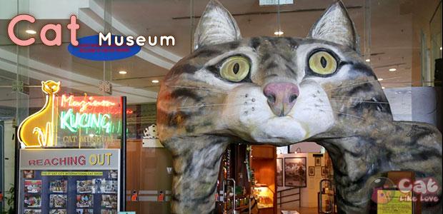[Travel] มาเที่ยว Cat City เมืองกูชิง มาเลเซียกัน!!