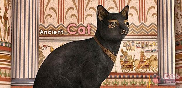 [Knw] ไขปริศนามิตรภาพของคนกับแมวจากดีเอ็นเอแมวโบราณ!!